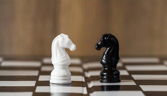 biały i czarny koń na szachownicy